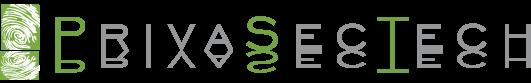PrivaSecTech.com Logo